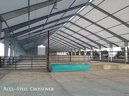 Accu-Steel crossover cattle building