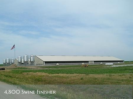 4800 head swine finisher facility