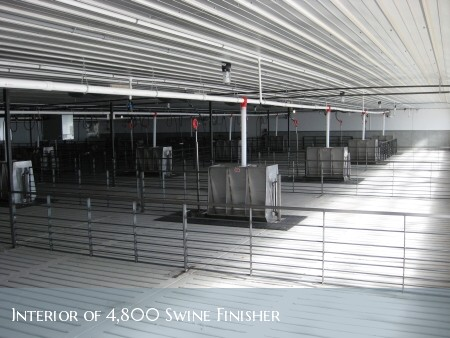 Interior of 4800 head swine finisher facility